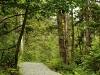 Path Through the Hill