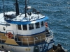 Seattle Skipper
