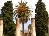 Palma Among the Ruins